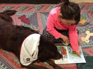 Grade 1 Student reading to Zoe, Therapy Dog